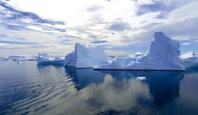 南极洲没有任何陆生哺乳动物