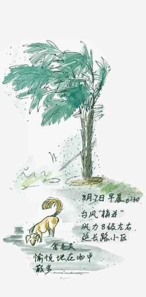 候鸟彩铅手绘图