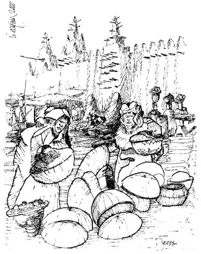 江南房屋图片手绘