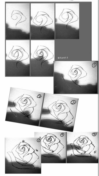 很简单的画法,根据教程的步骤练习,相信你也能画出漂亮的玫瑰花.